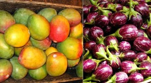 Indian Mango and Eggplant Banned in Europe
